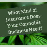 What Kind of Insurance Does Your Cannabis Business Need?