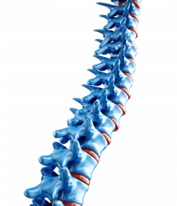 malpractice insurance for chiropractors